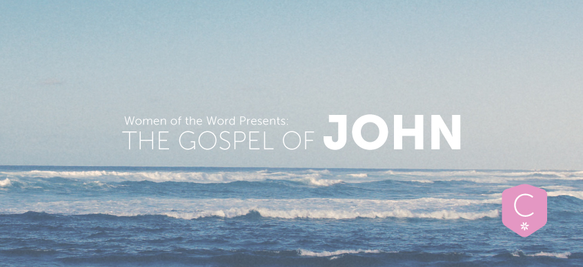 Women of the Word Presents: The Gospel of John, Week 6
